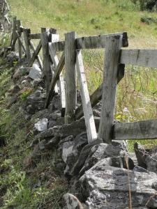 Fence in Ireland