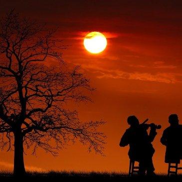 3 fiddlers